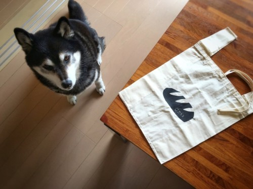dodoさんの熊本地震チャリティバック