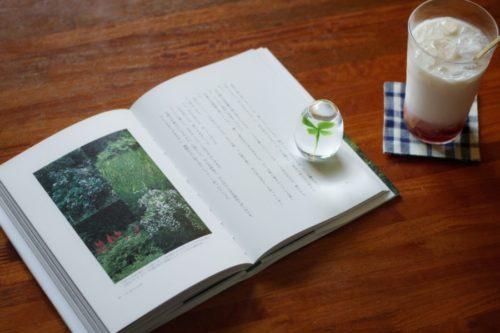 辰巳芳子さんの「庭の時間」