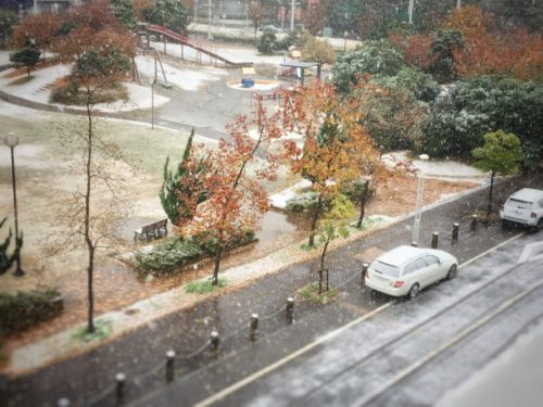 11月の積雪