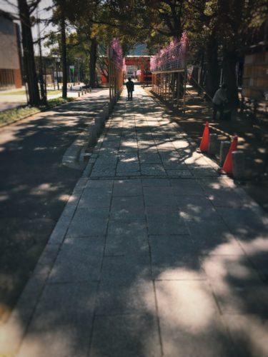 葛飾八幡宮の参道