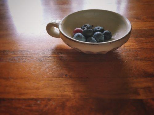 今日ベランダで収穫したブルーベリー