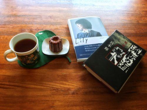 今読んでいるのは宮本輝さんの「流転の海」