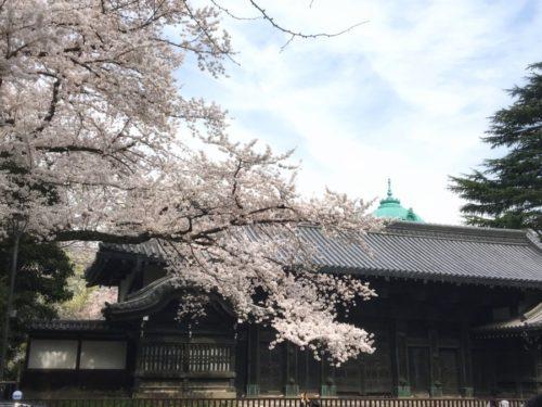国立博物館内にある池田家上屋敷表門(黒門)